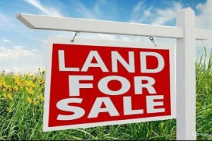 "Before buying land, here are a few tips on how to safeguard your interest as a buyer before letting go your money in a land transaction. ""Land"", ""building"", ""real estate"", ""real property"" and ""property"" are used interchangeably in this article."