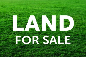 Land Registration: How to perfect title instruments to land in Nigeria: The land registration process and procedure